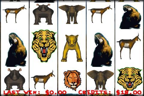 Slots of Animals