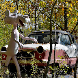 Pink Panther by Erin Czech - Artistic Objects Other Objects ( car, autumn, chain, pink panther, trees )
