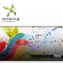 test web design avansat icon