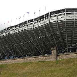 The Edinburgh Ark by Cliff Bell - Buildings & Architecture Other Exteriors