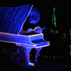 Blue Light Piano and Double Bass by Del Candler - Public Holidays Christmas ( piano, blue, double bass, christmas lights, musical instruments )