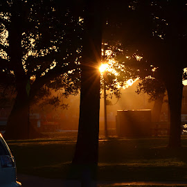Sunset on Burleigh Heads, Australia by Di Mc - Novices Only Street & Candid ( sunset, dusk, light, rays, sun, shadows )
