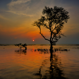 by Ajar Setiadi - Landscapes Sunsets & Sunrises