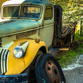 Tire Change? by Earl Heister - Transportation Automobiles