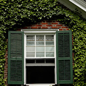 Dupont house in Pennsylvania by Jim Westcott - Buildings & Architecture Public & Historical ( buldings, houses, estates, architecture )