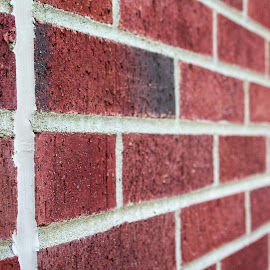 Brick in the wall by Ricky Stevens - Novices Only Abstract