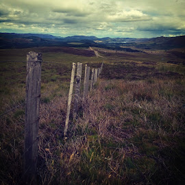 Scottish Highlands by Russell Prain - Instagram & Mobile Other ( mountains, instagram, landscape, heather, mobile )