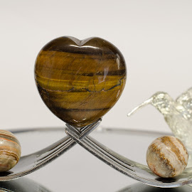 Stone Heart by Steve Wieseler - Artistic Objects Other Objects ( mirror, forks, hummingbird, petrified wood, tiger eye )