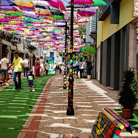 Floating umbrellas by Carina Stroo Cloeck - City,  Street & Park  Street Scenes ( umbrellas, color, colors, umbrella, street, agueda, Urban, City, Lifestyle )