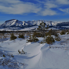 Ear Mountain Winter by Don Evjen - Landscapes Mountains & Hills ( clouds, forests, pines, mountains, montana, snow, blue skies, snow drifts )