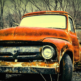 Little Old Stepside by Sue Delia - Transportation Automobiles ( antique truck, 50's, pickup, truck, ford,  )