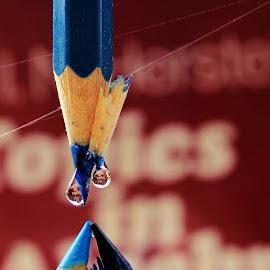blue pencil by Ponco Sujatmiko - Artistic Objects Education Objects ( ponco, blue, pencil, object )