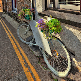 Bicycle by Graham Markham - Transportation Bicycles ( yellow lines, mousehole, sunshine, flowers, cornwall )