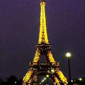 the Eiffel tower by Titus Criste - Buildings & Architecture Statues & Monuments ( eiffel tower, paris, night, nikon, p500,  )