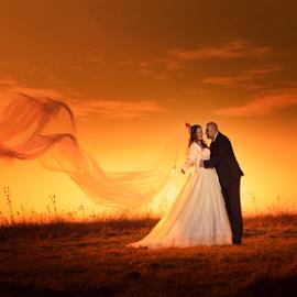 wedding-vencanje by Dejan Nikolic Fotograf Krusevac - Wedding Bride & Groom ( kraljevo, smederevo, aleksandrovac, vencanje, novi sad, paracin, krusevac, jaodina, svadba, subotica, fotograf )
