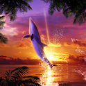 Dolphin Sunrise icon