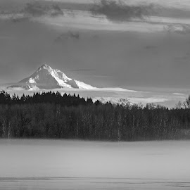 Mt Hood over Columbia River by Andy Vic Lindblom - Landscapes Mountains & Hills ( washington, oregon, b&w, nature, fog, columbia, mt hood, river )