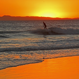 Surfer at Sunset by Jeannine Jones - Sports & Fitness Surfing (  )