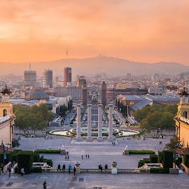 Dusk over Barcelona by Catalin Tibuleac Fotografie - City,  Street & Park  Skylines ( catalunia, sunset, cityscape, light, dusk, barcelona, spain )
