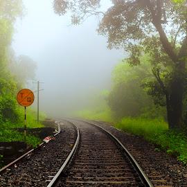 Misty Track by Raghu Varun Dev Tanna - Landscapes Travel ( railway, nature, fog, goa, trekking, india, forest, tracks, morning,  )