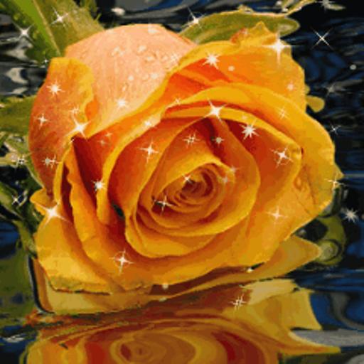 розы анимации красивые на телефон № 6993 без смс