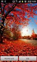 Screenshot of Fall (autumn) LiveWallpaper 10