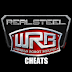Real Steel WRB Tips & Tricks