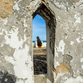 Looking throug by Tomek Karasek - Buildings & Architecture Architectural Detail ( canon, colonialism, window, cape coast, fort )