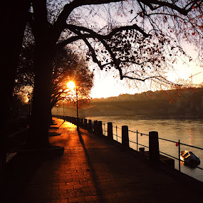 Sunrise in Switzerland by Bogdan Penkovsky - City,  Street & Park  Vistas ( winter, basel, switzerland, city )