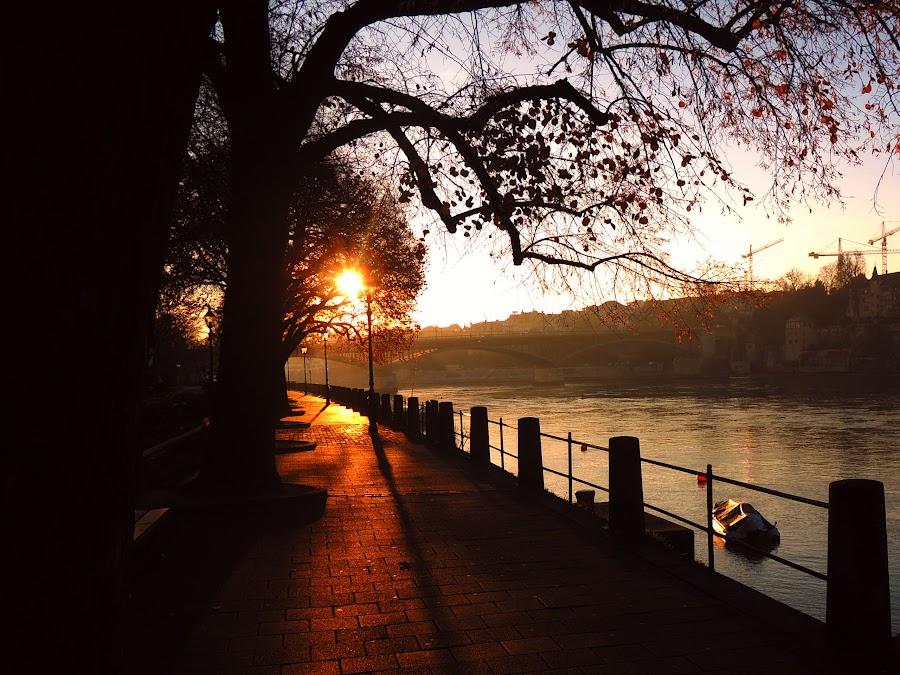 Sunrise in Switzerland by Bogdan Penkovsky - City,  Street & Park  Vistas ( winter, basel, switzerland, city )