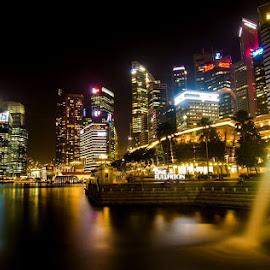 Nightscape in Singapoer City by Alfi Nurulhida - Landscapes Travel
