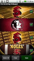 Screenshot of FSU Seminoles Revolving WP
