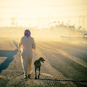 Walk Before The Race by Viktoryia Vinnikava - People Street & Candids ( saluki dog racing, warm, sunset, uae, dog, walk, man, saluki,  )