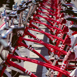 Barcelona Bikes by Rachael Hampson - Transportation Bicycles