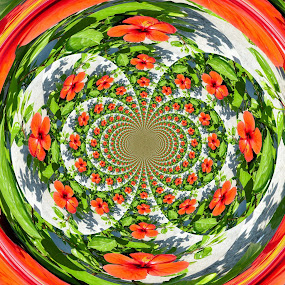 Hibiscus Symphony by Bozica Trnka - Digital Art Things ( abstract, hibiscus, art, symphony, digital, flower, colorful, mood factory, vibrant, happiness, January, moods, emotions, inspiration,  )