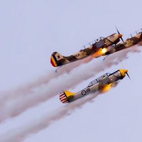 avioane (1).jpg