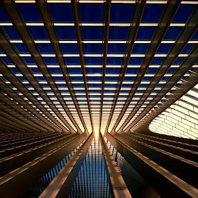 Piece of Art by Frank Quax - Buildings & Architecture Bridges & Suspended Structures