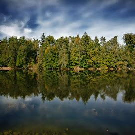 Autumn by Andy Just Andy - Landscapes Forests