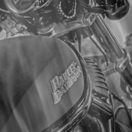 Smoking Hot Hawg by Judy Hall-Folde - Transportation Motorcycles ( bike, black motorcycle, black and white, black bike, motorcycle, digital, gauges )