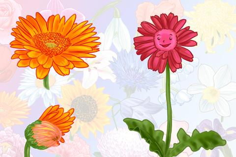 Цветы - детская книга