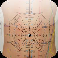 Screenshot of Acupuncture HandBook