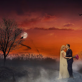 Under the Moonlight by Alan Evans - Wedding Bride & Groom ( foggy, wedding photography, melbourne wedding photographer, wedding day, wedding, aj photography, bride and groom, bride, marriage, groom, misty, moonlight )