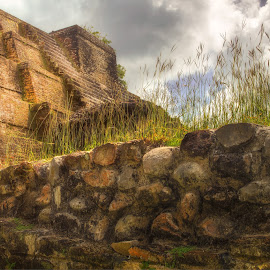 Myan Ruins by Paul Zeinert - Buildings & Architecture Statues & Monuments ( old, ancient, noon, ruin, myan ruins, belize, gods, stone wall, wall )