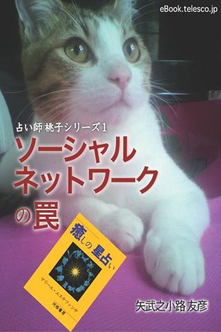 占い師 桃子シリーズ1 ソーシャルネットワークの罠