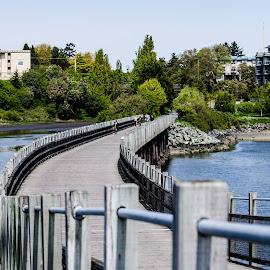 Wood Trestle Bridge  by Cory Bohnenkamp - Buildings & Architecture Bridges & Suspended Structures ( water, canada, wood, trail, trestle, victoria, galloping goose trail, bridge, bc )