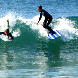 Costa Surfing by João Ascenso - Sports & Fitness Surfing ( surfing )