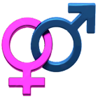 ZB Baby Gender Predictor icon