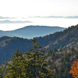 Smoky Mountains by Chuck Hagan - Landscapes Mountains & Hills
