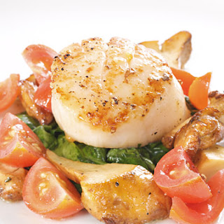 Sugar Seared Scallops Recipes