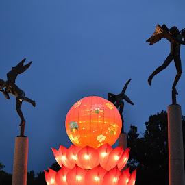 Lanterns at Botanical Garden by Stephanie Parmley Givens - City,  Street & Park  City Parks